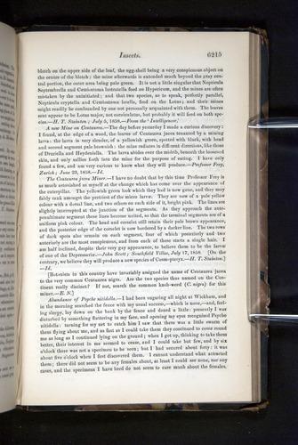 Image of Darwin-F349-1858-Zoologist-v16-06215