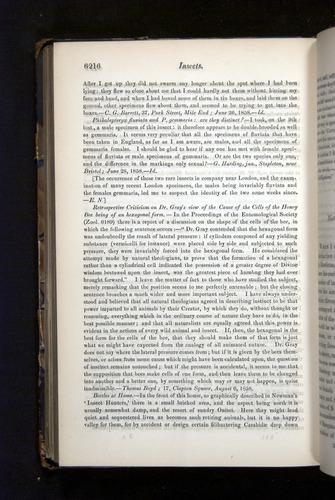 Image of Darwin-F349-1858-Zoologist-v16-06216