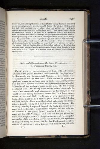 Image of Darwin-F349-1858-Zoologist-v16-06217