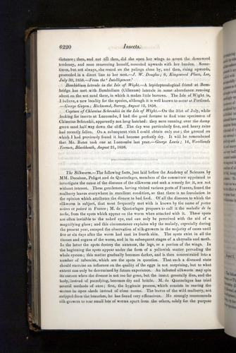 Image of Darwin-F349-1858-Zoologist-v16-06220