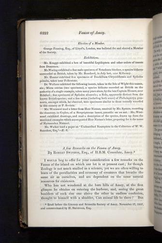 Image of Darwin-F349-1858-Zoologist-v16-06222