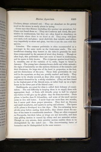 Image of Darwin-F349-1858-Zoologist-v16-06235
