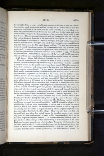 Image of Darwin-F349-1858-Zoologist-v16-06239
