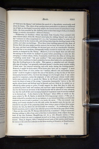 Image of Darwin-F349-1858-Zoologist-v16-06241