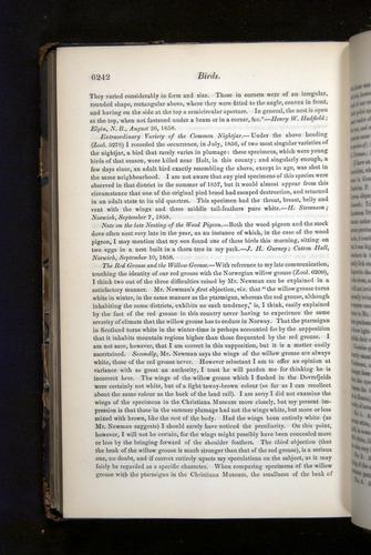 Image of Darwin-F349-1858-Zoologist-v16-06242