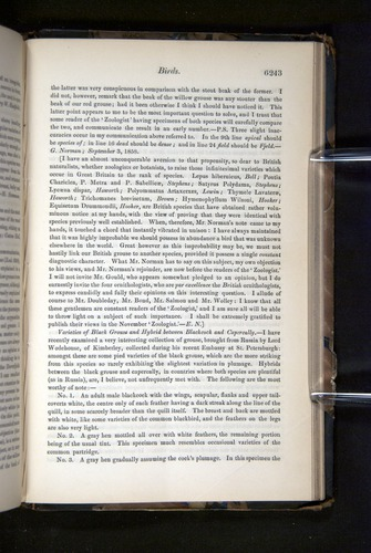 Image of Darwin-F349-1858-Zoologist-v16-06243