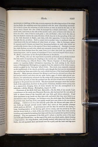 Image of Darwin-F349-1858-Zoologist-v16-06245