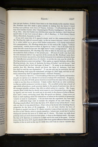 Image of Darwin-F349-1858-Zoologist-v16-06247