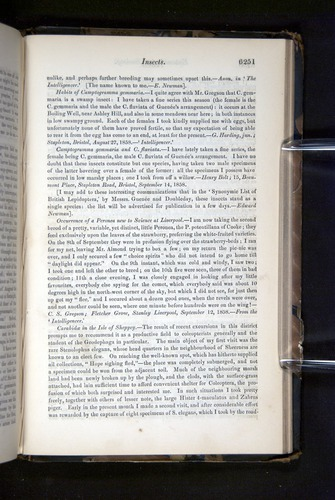 Image of Darwin-F349-1858-Zoologist-v16-06251