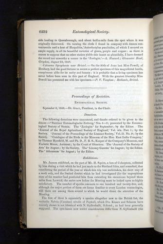 Image of Darwin-F349-1858-Zoologist-v16-06252