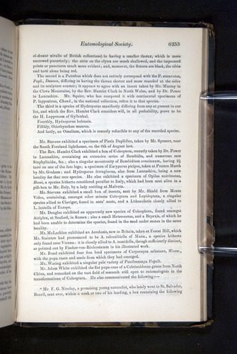 Image of Darwin-F349-1858-Zoologist-v16-06253
