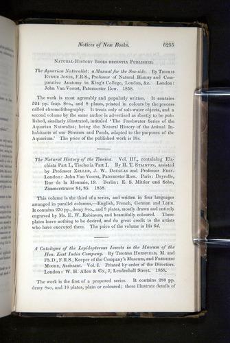 Image of Darwin-F349-1858-Zoologist-v16-06255