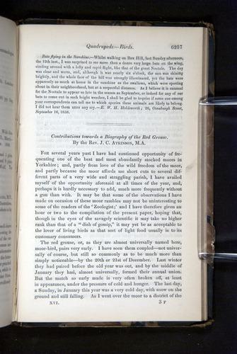 Image of Darwin-F349-1858-Zoologist-v16-06257