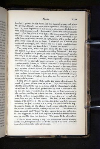 Image of Darwin-F349-1858-Zoologist-v16-06259