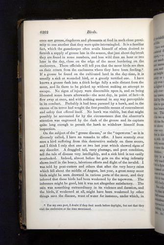 Image of Darwin-F349-1858-Zoologist-v16-06262
