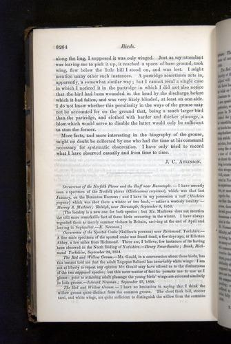 Image of Darwin-F349-1858-Zoologist-v16-06264