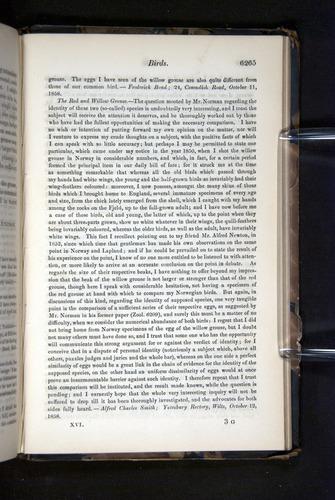 Image of Darwin-F349-1858-Zoologist-v16-06265
