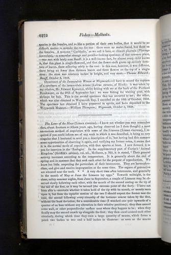 Image of Darwin-F349-1858-Zoologist-v16-06272