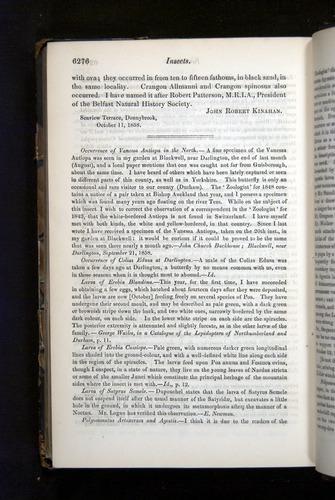 Image of Darwin-F349-1858-Zoologist-v16-06276
