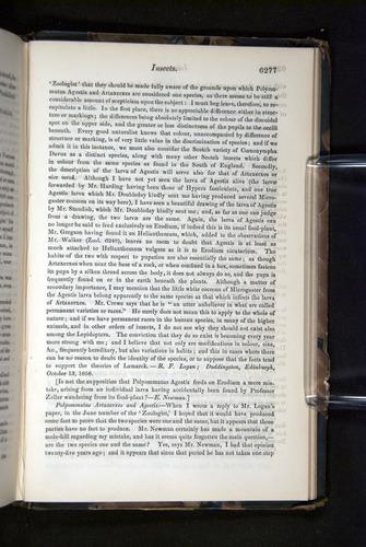 Image of Darwin-F349-1858-Zoologist-v16-06277