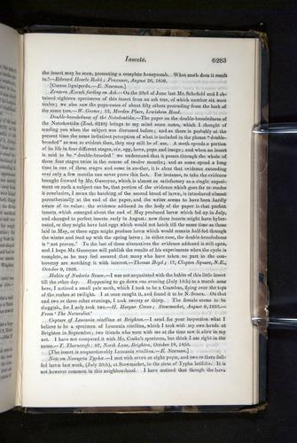 Image of Darwin-F349-1858-Zoologist-v16-06283