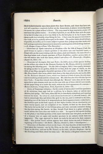 Image of Darwin-F349-1858-Zoologist-v16-06284