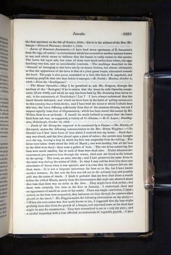 Image of Darwin-F349-1858-Zoologist-v16-06285