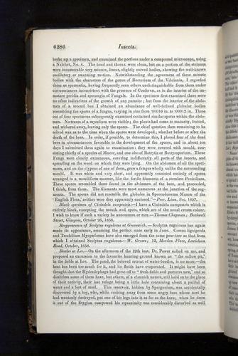 Image of Darwin-F349-1858-Zoologist-v16-06286
