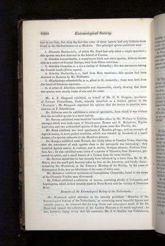 Image of Darwin-F349-1858-Zoologist-v16-06290