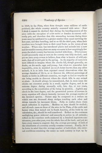 Image of Darwin-F349-1858-Zoologist-v16-06294