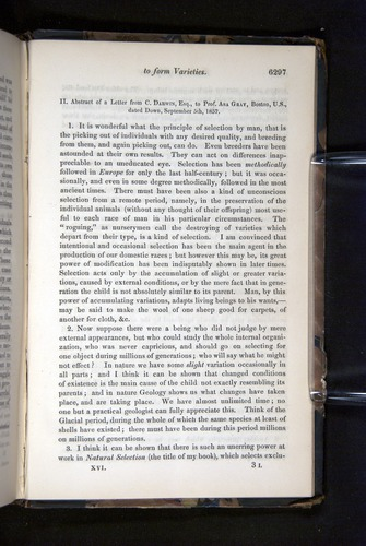 Image of Darwin-F349-1858-Zoologist-v16-06297