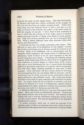 Image of Darwin-F349-1858-Zoologist-v16-06298