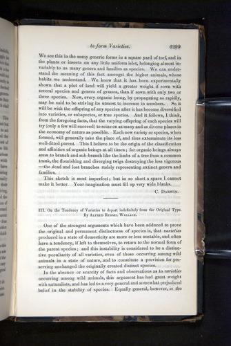 Image of Darwin-F349-1858-Zoologist-v16-06299