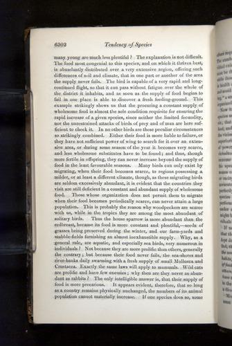 Image of Darwin-F349-1858-Zoologist-v16-06302