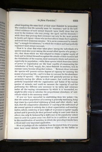 Image of Darwin-F349-1858-Zoologist-v16-06303