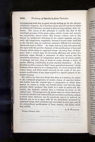 Image of Darwin-F349-1858-Zoologist-v16-06308