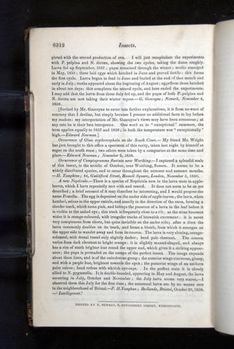 Image of Darwin-F349-1858-Zoologist-v16-06312