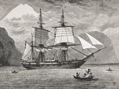Image of Darwin-F64-1890-zzzz-det-000-fp