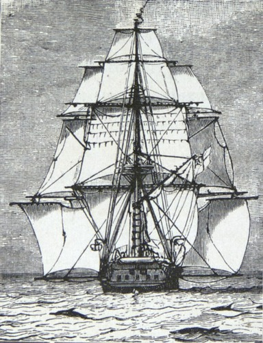Image of Darwin-F64-1890-zzzz-det-000-tp