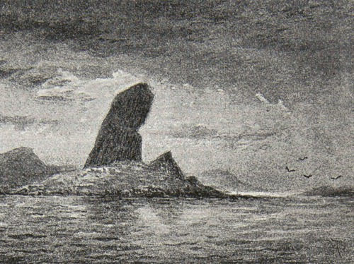 Image of Darwin-F64-1890-zzzz-det-001