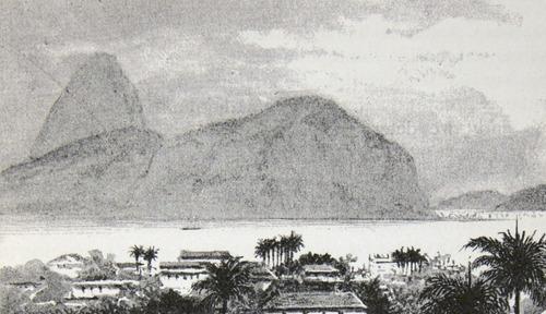 Image of Darwin-F64-1890-zzzz-det-019