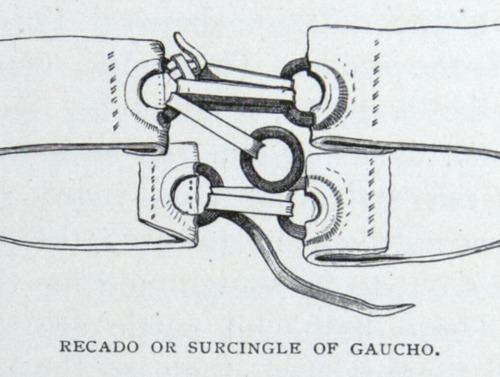 Image of Darwin-F64-1890-zzzz-det-046
