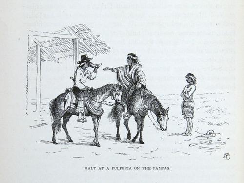 Image of Darwin-F64-1890-zzzz-det-064