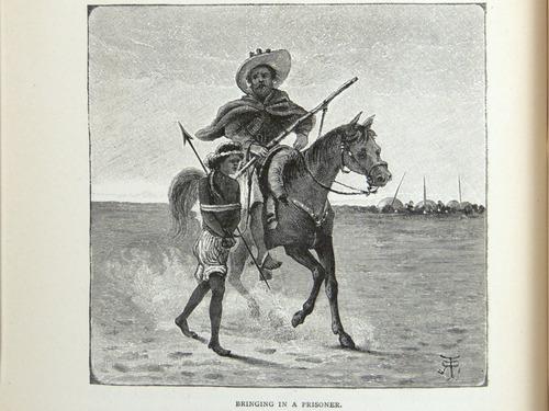 Image of Darwin-F64-1890-zzzz-det-084