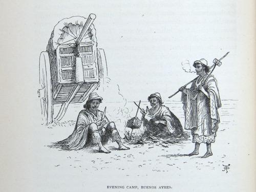 Image of Darwin-F64-1890-zzzz-det-128