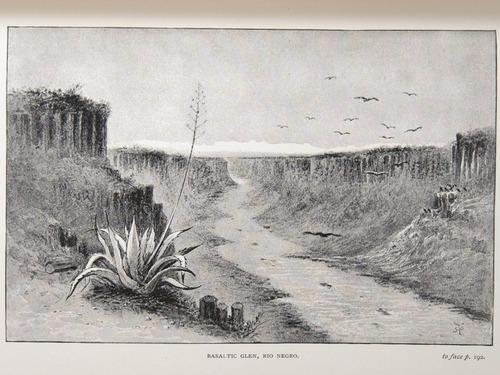Image of Darwin-F64-1890-zzzz-det-192-f5
