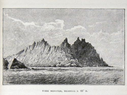 Image of Darwin-F64-1890-zzzz-det-215