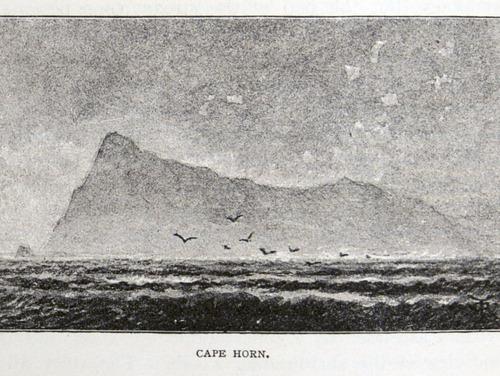Image of Darwin-F64-1890-zzzz-det-222