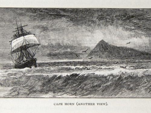 Image of Darwin-F64-1890-zzzz-det-223
