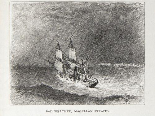 Image of Darwin-F64-1890-zzzz-det-229